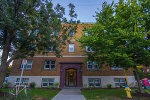 Spacious 1 Bed Apartment in the Glebe!
