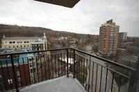 Gorgeous 3 1/2s proximity to Mount-Royal available July 1st