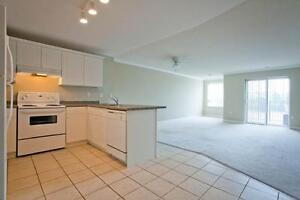 2 Bdrm available at 55 William Street East, Waterloo Kitchener / Waterloo Kitchener Area image 7