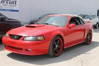 """2002 FORD MUSTANG GT CONV.MAGS 20"""" V8"""
