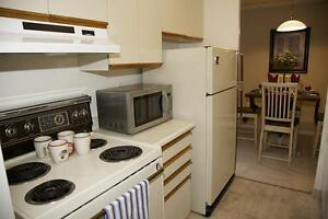 St. Thomas 1 Bedroom Apartment for Rent: Rooftop pool, gym, A/C