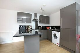 1 bed HOUSE! Central Brixton £345pw MUST VIEW
