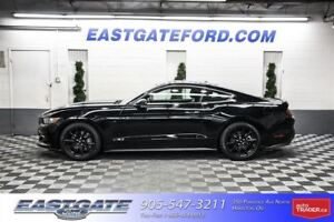 2017 Ford Mustang GT/Executive/-$1500.00/-$1000.00 Costco