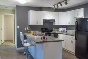 BRAND NEW 2 bedroom apartment north east Calgary in Skyview!