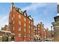 ***PERFECT LOCATION ONE BED FLAT IN PIMLICO***