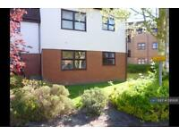 1 bedroom flat in Hamilton Court, Witham, CM8 (1 bed)