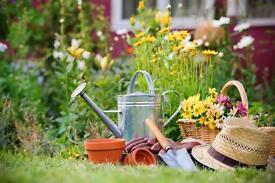 Landscaping/gardener/farm worker/outdoor work wanted