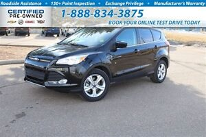 2014 Ford Escape Chrome exhausts , rear spoiler s