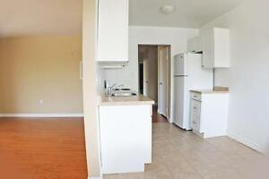 **Sarnia 1 Bedroom Apartment for Rent in a Quiet Neighbourhood** Sarnia Sarnia Area image 7