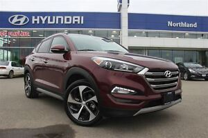 2017 Hyundai Tucson Bluetooth/Alloys/Moonroof/Leather