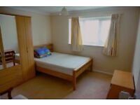 Double room available for single use. 2 weeks deposit. No extra fee!