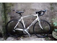 SPECIALIZED ALLEZ SPORT ELITE, 22 inch XL size, racer racing road bike, 18 speed, carbon fork