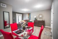 Brand New Two Bedroom Condos For Rent
