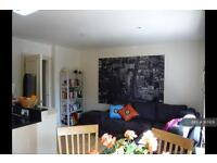 2 bedroom flat in Battersea Park Road, Battersea, SW11 (2 bed)