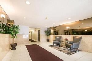 NORTH LONDON - Huge One Bedroom with Modern Updates for Jan. London Ontario image 11