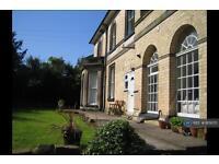 1 bedroom flat in Duffield Road, Derby, DE22 (1 bed)