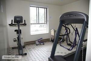 Kingston 2 Bedroom Apartment for Rent: Gym, pool, sauna, dog run Kingston Kingston Area image 4