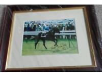 Willie Carson signed framed photo