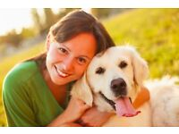 Do you love animals? Would you like to become a pet sitter in your spare time? Free insurance