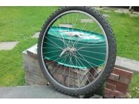 "26"" mtn bike wheel and tyre"