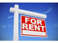 Looking to rent