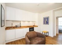Amazing One bedroom with spacious Lounge Apartment Moments From Thornhill Square and Kings Cross!
