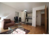 BEAUTIFUL 1 BEDROOM WITH LARGE BALCONY,WOOD FLOORS & CONCIERGE IN INDESCON SQUARE, CANARY WHARF