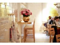 Chef de partie/ Commis chef- great pay including Tronc, busy restaurant, dynamic team