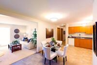 Pet friendly 2BR Apartment w/insuite laundry (month to month)