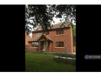 3 bedroom house in Mansfield Road, Farnsfield, NG22 (3 bed)