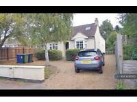 5 bedroom house in Church Lane, Cambridge, CB3 (5 bed)