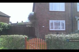 2 bedroom house in Amersham Ave, Edmonton, N18 (2 bed) (#1088416)