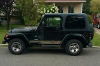 Jeep TJ Wrangler 2003 Rocky Mountain