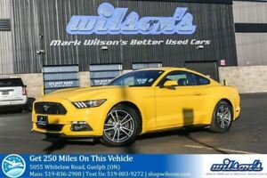 2015 Ford Mustang ECOBOOST PREMIUM LEATHER! HEATED+COOLED SEATS!