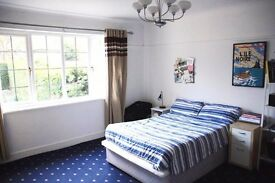 Double room in spacious flat in Golders Green