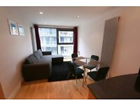 9th floor ONE bedroom flat, furnished, porter, 5 mins to Canary Wharf, E14 9NE, parking available