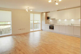 BRAND SPANKING NEW! This NEWLY BUILT and LUXURIOUS 2 bedroom apartment.