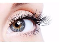 Professional Individual and Volume lashes in beauty salon- Finsbury Park