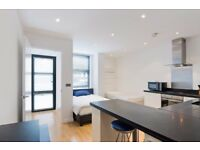 *MODERN STUDIO WALKING DISTANCE TO CANARY WHARF ISLE OF DOGS SOUTH QUAY E14- £1,000PCM