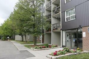Non-Smoking 2 Bedroom Apartment for Rent in Charming Stratford Stratford Kitchener Area image 11