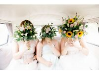 Wedding videographer London - Free video on 20 and 21 May