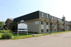 1 Bedroom Apartment for Rent in Elmira: Close to parks, schools
