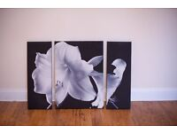 Lilly Canvas triptych