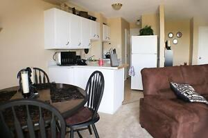 1 Bedroom Apartment for Rent in Sarnia: Transit right outside Sarnia Sarnia Area image 3