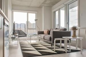 Furnished - Flexible 4 to 8 month lease! STARTING SEPT #774
