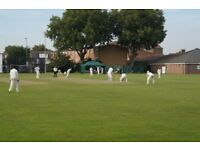 Newham Cricket Club - Recruiting new players