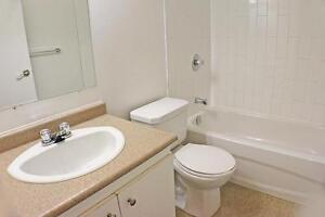 Be at home with Skyline! 1 Bedroom Apartment for Rent in Sarnia Sarnia Sarnia Area image 3