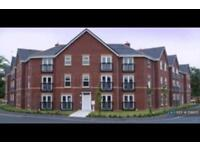2 bedroom flat in Mystery Close, Liverpool, L15 (2 bed)