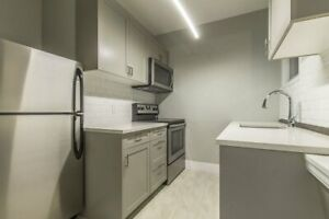 AVAILABLE JULY 1ST!!! - 1 BED 1 BATH - NEWLY RENOVATED