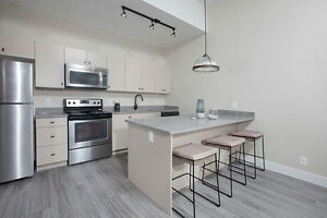 BEAUTIFUL, ONE OF A KIND, LOFT-LIKE UNITS: NOW LEASING!!